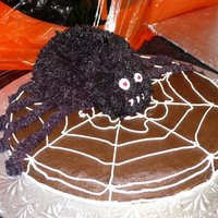 Spider On Web   Chocolate cake iced in choclate buttercream with web design, chocolate spider cake on top iced in buttercream.