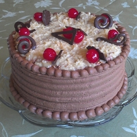 Father's Day Cake This was my attempt to mimic my dad's favorite candy bar...Mounds! The cherries were just to add color...he loved it!