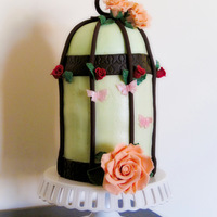 Birdcage Cake I made this for my mother's birthday. Buttercream iced, double barrel cake with fondant and gumpaste accents. It was my first time...