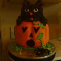 Pumpkin, Cat And Spider Cake the pumpkin was made by baking 2 cakes in a glass bowl, I stuck them together and shaped it then covered with fondant and the cat was made...