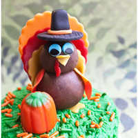Turkey Topper Just made this turkey topper and I think it turned out super cute! I used modeling chocolate for the body and fondant for all the other...