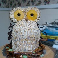 Owl Cake I got the idea from a post here at CC. My best friend LOVES owls so I made this cake for her. I had to dry out the pineapple rings myself...
