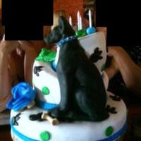 Great Dane Cake My friend and I made a cake for a fellow friend who LOVES Great Danes. We had fun making this cake. My daughter cut the puppy paws out of...
