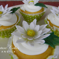 Daisy Cupcakes All made of fondant.