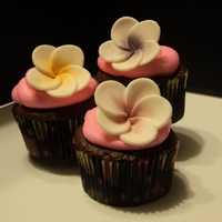 Frangipani Cupcakes Buttercream frosting with gumpaste frangipani