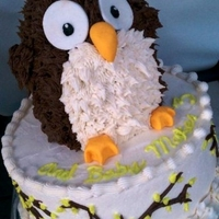 3D Babyshower Owl Cake The owl is made out of cake the cake mesured 14 inches total. I was a great challenge.