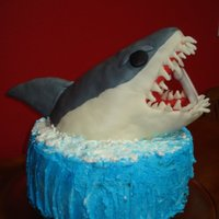 Shark Cake My son wanted a shark for his 10th birthday. He got what he ordered.