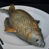 Carp Cake I wanted a quick cake to make for my husbands bday other than a fossil. I just had to trial a fish cake.