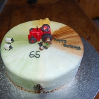 65Th Farming Themed Cake Farming seasons inspired with a stupidly small replica of my dads vintage tractor which meant everything else was riddiculously small to...