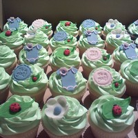 Baby Shower, Pink, Purple, Green And Lady Bugs! Chocolate and Vanilla Cupcakes with buttercream icing, topped with hand cut MMF toppers made to match the theme pink, purple, and green...