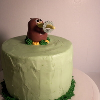 Kiwi Cake This was my most unusual cake request so far. Key Lime Cake with Lime Cream Cheese Frosting. The customer wanted a kiwi bird holding a...