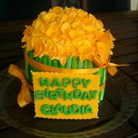 Daffodil Cake Chocolate Cake with cream filling. Inspiration by awsus...TFL.