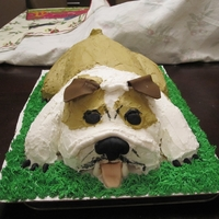 Bull Dog Cake  First time making a carved cake and it was hard. Made it as a surprise for my friend who loves Bull dogs and loves icing. Dog is all icing...