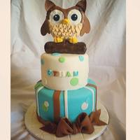 Owl Baby Shower Cake Owl Baby Shower Cake