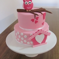 Owl 1St Birthday Fondant decorated 2 tier chocolate mudcake