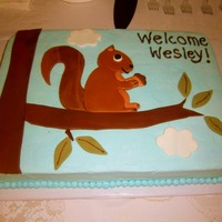 Squirrel Baby Shower Cake This cake was for a friend that was doing her little boy's nursery in woodland creatures.