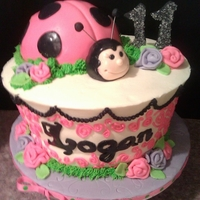 Lady Bug Cake Lady Bug Birthday Cake, made with girls favorite colors, pink and purple