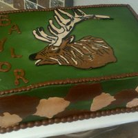 Bull Elk Head On Camo Sheet Cake Profile of a bull elk head on a camo sheet cake.