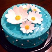 Turquoise Cake *Leather imitation.