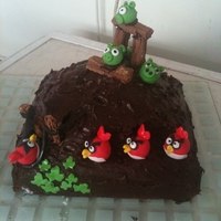 Angry Birds Cake Contest I had this cake for my boys birthday, made from chocolate sponge, sugarpaste birds