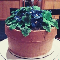 "Flower Pot Cake 8"" chocolate cake with dulce de leche coffee swiss meringue buttercream frosting and filling. Fondant flowers and leaves. Inspired by..."