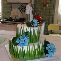 Bridal Shower 2 tier bridal shower cakefondant grass