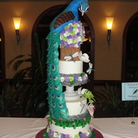Botanical Garden Peacock My first competition cake and received an Honorable Mention :)
