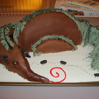 Anteater Cake This is a cake I made for someone whose favorite animal is the giant anteater. It is chocolate pudding cake with brown fondant covering and...