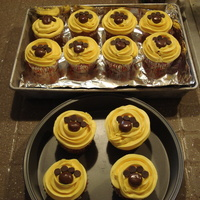 University Of Washington Husky Paw Print Cupcakes These are gluten-free apple cinnamon cupcakes with yellow buttercream icing. The University of Washington's mascot is a husky, so I...