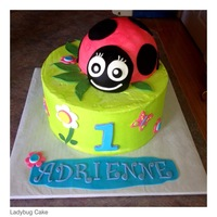 Ladybug 1St Birthday  Used half of ball pan for lady bug body. Head is made with half of a mini ball and covered with fondant. Garden accents with fondant. Cake...