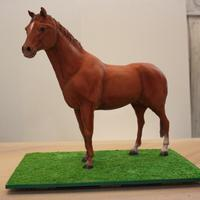 Standing Horse Cake This is my horse I've entered in a local competition, in novice class - as it's my first year. It took a good 5 days to do, as I...