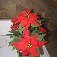 Poinsettia Flowers These Flowers Are Going To Be The Top Of A Christmas Cake The Bottom Will Be A Pot I Will Post Pics When It Is Done Poinsettia Flowers. These flowers are going to be the top of a Christmas Cake. The bottom will be a pot. I will post pics when it is done,...
