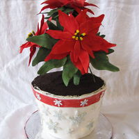 Poinsettia Cake Chocolate and Vanilla cake with Italian butter cream between the layers. The outer cake is iced with egg nog butter cream. The flowers are...