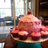 Pinkalicious Cake And Cupcakes Made this for my daughter's Pinkalicious Birthday party