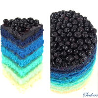 Blue Rainbow Cake White Velvet Cake with Lemoncurd and Blueberrys. So simple and so beautiful :-)