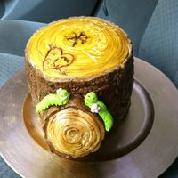Tree Stump Anniversary Cake *Single cake frosted with BC, top is a cut out round fondant disk I etched with a scalpel knife, sides are fondant textured with various...