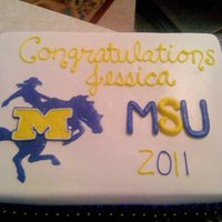 Mcneese State University McNeese graduation cake. All buttercream.