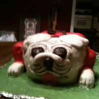 Bulldog Birthday cake for youngest son who is a GA Bulldog fan