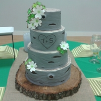 Rustic John Deer Wedding My bride wanted a tree cake for her rustic wedding. It was so much fun to do! A few days before the wedding she told me that she had...