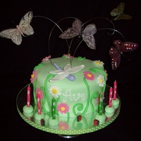 Butterfly Garden Birthday Cake A birthday cake for a 7 year old nature girl. Cake included feather butterflies flying over the cake, a fondant dragonfly and ladybugs. The...