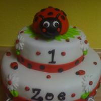 Lady Bug Birthday *
