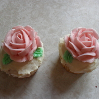 Rose Cupcakes Cupcakes topped with buttercream roses I made.