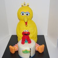 Big Bird This cake was made for a little boy's first birthday. It was a donation cake becuase he has been in the hospital his whole life. Made...