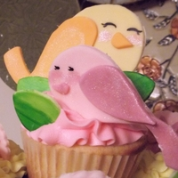 Sweet Birds This customer wanted cupcakes for a 1st birthday - easier to serve to little hands quickly. I matched the theme/decor to the partyware. All...
