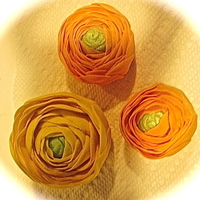 Orange And Yellow Ranunculus I love ranunculus. They take a long time to make but I love the many variations I see. I made these yellow and orange for a birthday cake,...