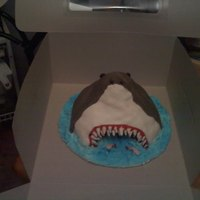 Shark In The Water A shark smash cake that I made for a first birthday. Thanks to the people that made similar cakes as my idea came directly from them. It&#...