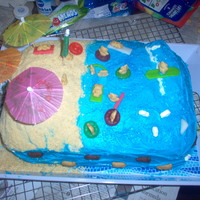 Beach Party My neice wanted a beach theme for her party so this is what I did.
