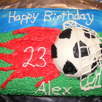 Soccer Birthday Cake Cake that I was talked into doing all in just one day. Didn't want to do a regular normal soccer cake, as all I could find in research...