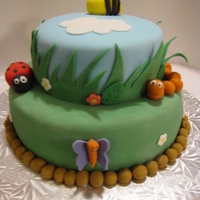 Springtime Vanilla cake covered in fondant. All insects made with fondant.