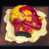 Anatomical Wax Model Cake